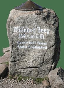 Stein in der Lüneburger Heide